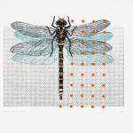 myrthevdheijkant-libelle-zwart-vleugels-blauw-stippen-oranje