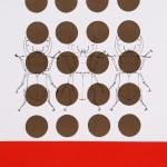 myrthevdheijkant4815-kevers-zwart-stippen-bruin-rode-baan