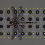 myrthevdheijkant_4830-kevers-wit-rood-libelle-zwart-stippen-zwart-geel