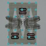 myrthevdheijkant_4832-kever-wit-zwart-vleugels-op-blauw